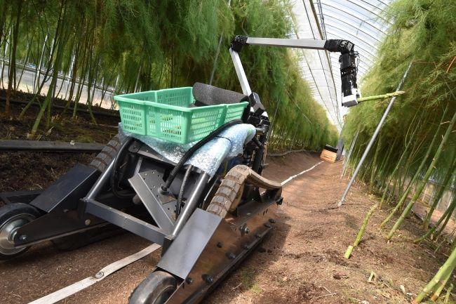 AI野菜収穫ロボットを開発するinaho、九州進出となる拠点を佐賀県に新設
