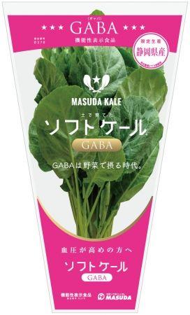 増田採種場、GABAを含む「機能性表示食品」として生鮮野菜ケールを販売
