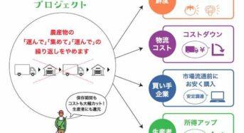 JA横浜とNTTドコモなど、神奈川県で生産者と買い手のマッチング実証へ