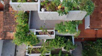 マレーシア「現代建築x都市型農業」プランターBOXハウス<動画付>