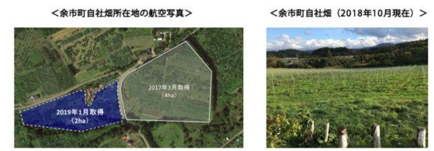 アサヒ、北海道余市町に日本ワイン用ぶどう畑の農地を2ha追加取得