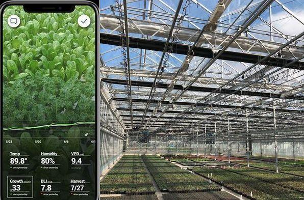 施設園芸・植物工場のAI栽培管理、米国ベンチャーが750万ドルの資金調達を実施