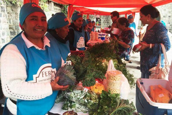 南米有数の人口密集地・エクアドルの首都キトでも都市型ファームが4,000カ所以上も開設