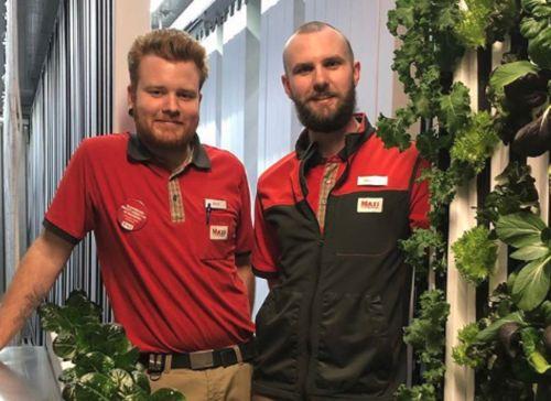 スウェーデンの大手スーパーが店舗併設型の植物工場を稼働。その導入理由は?