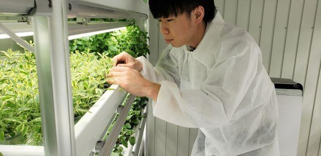 農福連携型・植物工場を運営するスタートライン、第6ファーム施設をオープン予定