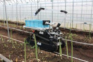 inahoのアスパラガス収穫ロボットを新たに公開