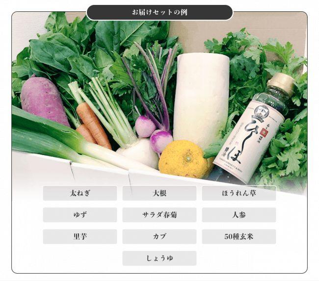 IYaSaKaストア脳育ラボ、無農薬・無化学肥料の野菜と発酵調味料をセットで販売