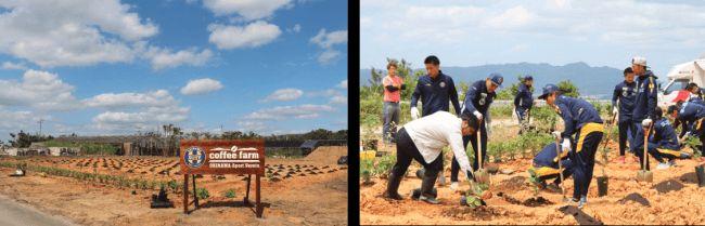 サッカー元日本代表 高原直泰が率いる沖縄SVとネスレ、沖縄で初となる大規模な国産コーヒー豆の栽培へ