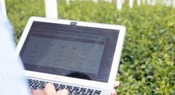 ウフル子会社、福岡県の玉露茶葉にIoTシステムを実証導入。農業データの収集と可視化へ