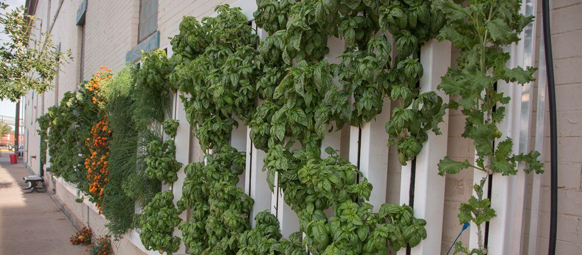 米国ワイオミング州ビジネス協議会、タワー型の植物工場キットを導入する際の補助金支援へ