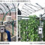 西松建設、乾電池のみで温度・日射などを測定可能な環境監視サービスを開始