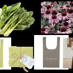 """廃棄野菜・食材から染色した""""着る野菜""""『FOOD TEXTILE』が春夏に合わせて商品ラインナップを拡大"""