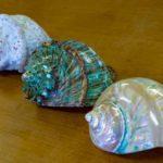 沖縄の滞在型カヌチャリゾート、夜光貝を利用したジュエリーなどオリジナル商品を販売