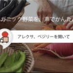 Alexaアレクサで宮崎産オーガニック野菜が買える、Amazon Pay対応 Alexaスキル「VEGERY」をリリース