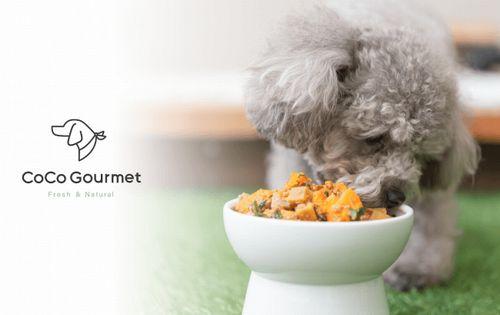 獣医師監修・フレッシュタイプの犬用完全栄養食「CoCo Gourmet ココ グルメ」約1,800万円の資金調達も実施