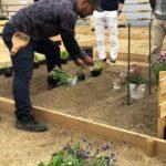 修復不可の空き家を解体、貸農園を整備「がもよんファームプロジェクト」