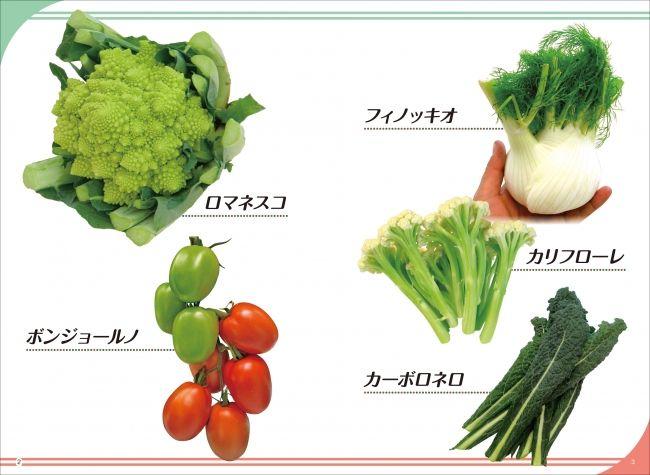 『国産・イタリア野菜のすすめ』が発売。高級野菜として日本での生産事例も増加