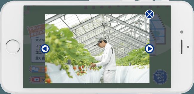 ジャム工場見学アプリ「アヲハタ フルーツタウン」を配信開始。イチゴの栽培技術もアプリで見学