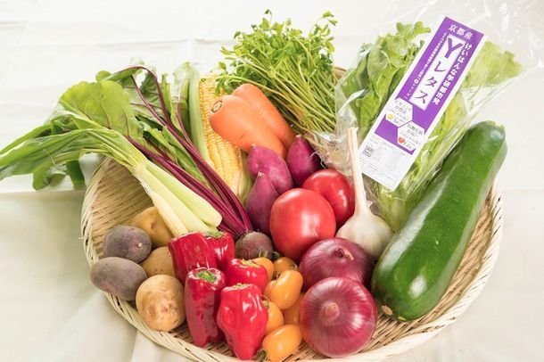 YASAI、京都府立大と共同で植物工場による高機能野菜を開発