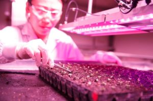 ニュージーランド政府、植物工場などの最新技術テーマに15億円を投資
