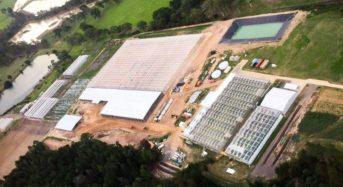 豪州のアクアポニクス型植物工場が施設規模を拡大。年成長率20%のオーガニック市場を狙う