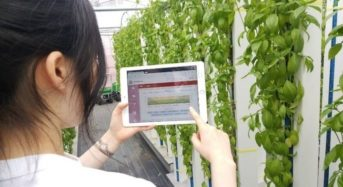 タワー型植物工場のグリーンリバーHD、埼玉県深谷市から出資受け入れ