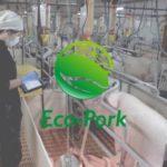 リアルテックファンド、最新技術と環境負荷低減を実現する養豚ベンチャー「Eco-Pork」への出資