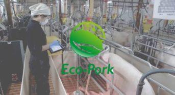 リアルテックファンド、最新技術と環境負荷低減を実現する養豚ベンチャー「Eco-Pork」へ出資