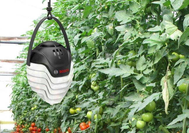 ボッシュ、AIを活用した病害予測「Plantect ®」を「AGMIRU」で販売開始。トマト以外にキュウリ・イチゴの病害にも対応