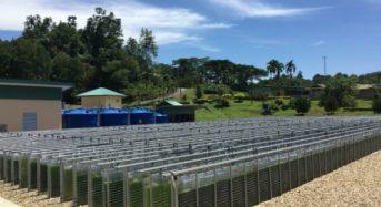ちとせグループ、マレーシア・熱帯環境下にて世界最大級の藻類培養プラントを開発