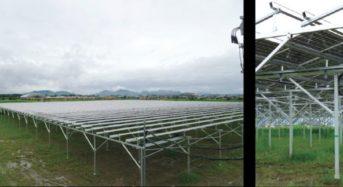 ニッショク、滋賀県愛荘町にソーラーシェアリングを設置。太陽光パネル下にてニンニクを栽培