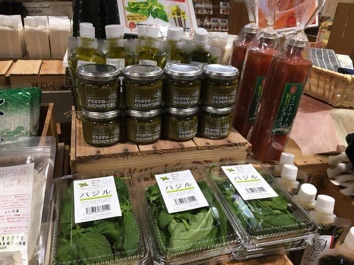 グリーンリバー、北部九州4県を対象としたバジル買取制度を開始。小規模投資による植物工場への参入にも対応