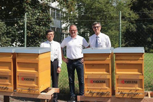 京セラの欧州拠点、ミツバチプロジェクトを開始。ドイツの事業所に6つの巣箱を設置