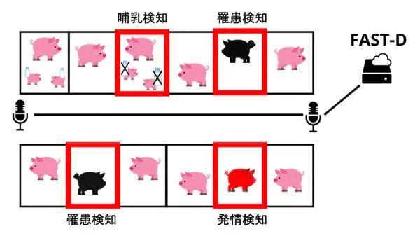 三菱ケミカルHD、Hmcomm・宮崎大と豚の音声検知システムの開発で共同研究を開始