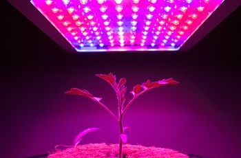 マウザーが植物工場に関する各資材・設計リソースを集約した情報サイトを開設