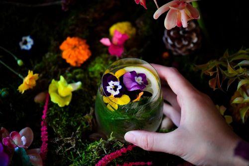 お客が収穫できる体験型レストラン。植物工場による食用花を採用した期間限定イベント「おいしい花畑」