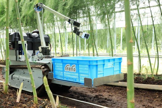 inahoがRaaSモデルで自動野菜収穫ロボットのサービス提供を開始