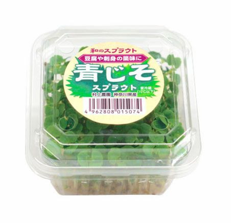 村上農園による和のハーブ・大葉、新野菜「青じそスプラウト」として販売開始