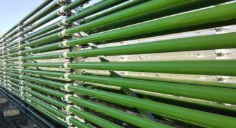 生スピルリナ藻類を販売するタベルモ、ブルネイの新工場が竣工