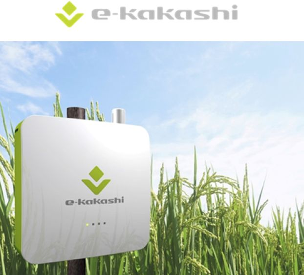 ソフトバンク、コロンビアの「スマートライスファーミングプロジェクト」に農業AIブレーン「e-kakashi」を納入