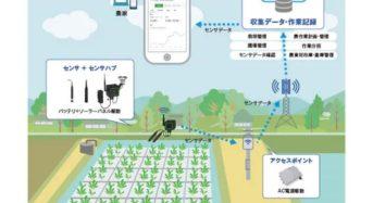 NTTドコモ、水耕栽培にも対応した環境モニタリング・営農支援プラットフォーム「畑アシスト」を提供開始