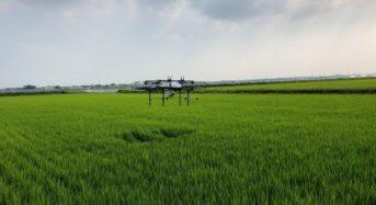 住友商事とナイルワークス、農業用ドローンによる1,000ヘクタール超の水稲生育データを取得