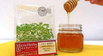 村上農園、「ハチミツみたいに甘い」「ナッツのような風味」マイクロハーブ・プレミアム版を販売開始
