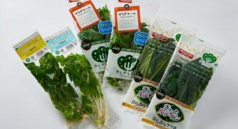 日本山村硝子とJR貨物、植物工場事業を行う合弁会社を設立