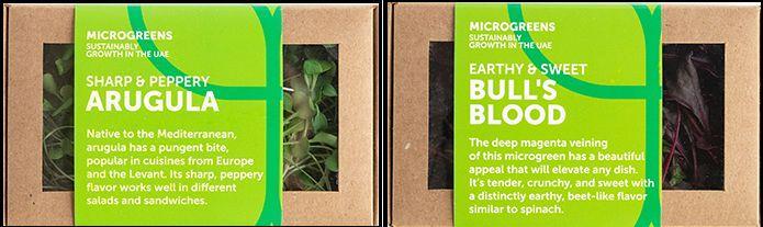 UAEドバイの植物工場、一般消費者向けにマイクログリーン・ベビーリーフを販売