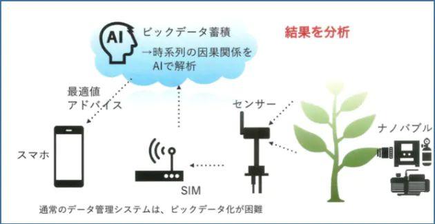日本IBMとカクイチ、栽培環境データ分析とナノバブル散水などを融合したサービスを開始