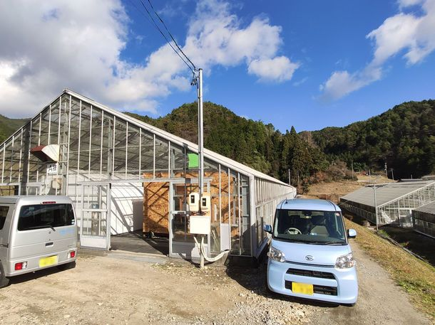 電気工事・太陽光発電のエネテク、東白川村にてキクラゲの栽培と販売開始