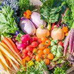 フレッシュグループ、彩り野菜・バジルなどのハーブ野菜をオンラインで販売