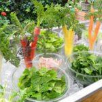 自家栽培した有機野菜のレストラン「スローフードキッチン レールサクレ」がオープン