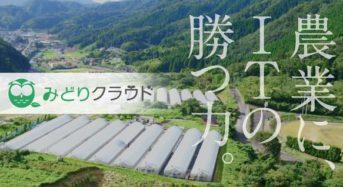 セラク、農水省のスマート農業プロジェクトに採択。アスパラガス実証栽培へ